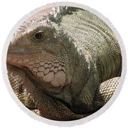 Here Leezard Leezard Round Beach Towel