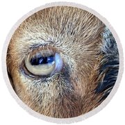 Here's Looking At You Kid - The Truth About Goats' Eyes Round Beach Towel