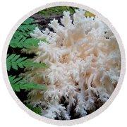 Mushroom Hericium Coralloid Round Beach Towel