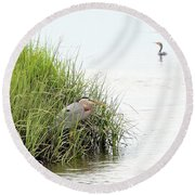 Heron And Cormorant Round Beach Towel