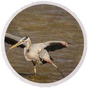Heron - Hokey Pokey Round Beach Towel