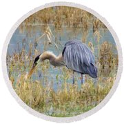 Heron Hunting In Shallows Round Beach Towel