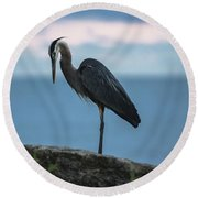 Heron In Colchester Round Beach Towel