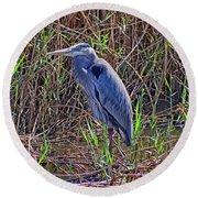 Heron In Marshes Round Beach Towel