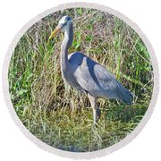 Heron In The Wetlands Round Beach Towel