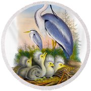 Heron Antique Bird Print Joseph Wolf The Birds Of Great Britain  Round Beach Towel