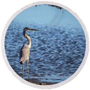 Heron Round Beach Towel