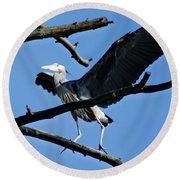 Heron Spreads Wings Round Beach Towel