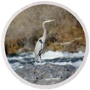 Heron The Rock Round Beach Towel