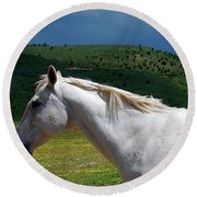 Hero's Horse-colorful Background Round Beach Towel