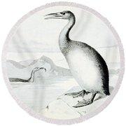 Hesperornis Regalis, Flightless Bird Round Beach Towel