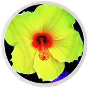 Hibiscus 10 Round Beach Towel