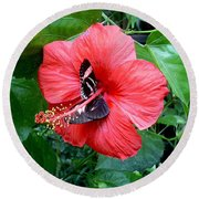Hibiscus And Butterfly Diners Round Beach Towel