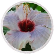 Hibiscus Beauty Round Beach Towel