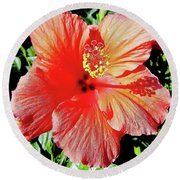 Hibiscus - Dew Covered - Beauty Round Beach Towel