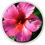 Hibiscus Fly-by Round Beach Towel
