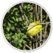 Hidden Yellow Tulip Round Beach Towel