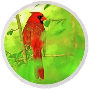 Hiding Behind The Leaves - Male Cardinal Art Round Beach Towel