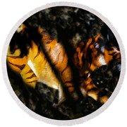 Hiding Tiger Round Beach Towel