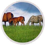 High Browsers Round Beach Towel