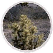 High Desert Country Round Beach Towel