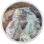 High Falls Dupont Forest Round Beach Towel