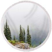 High Forest On Mt. Rainier Round Beach Towel