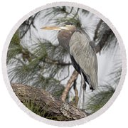 High In The Pine Round Beach Towel