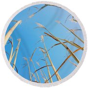 High In The Sky Round Beach Towel