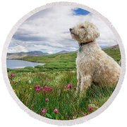 High Meadow With Eyes To The Sky Round Beach Towel