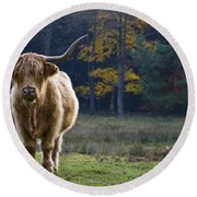 Highland Cow In France Round Beach Towel