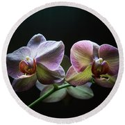 Highlighted Orchids Round Beach Towel