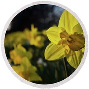 Highway Daffodil Round Beach Towel