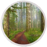 Hiking Trail In Washington State Park Round Beach Towel