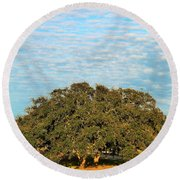 Hill Country Tree  Round Beach Towel