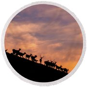 Hillside Elk Round Beach Towel