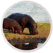 Hippo Mother And Child - Botswana Africa Round Beach Towel