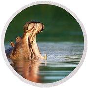 Hippopotamus Round Beach Towel