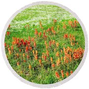 History Of The Paintbrush Round Beach Towel