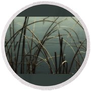 Hoar Frost On Pond 1 Round Beach Towel