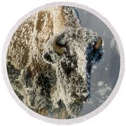 Hoarfrosted Bison In Yellowstone Round Beach Towel