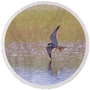 Hobby Skimming Water Round Beach Towel