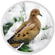 Holiday Dove Round Beach Towel