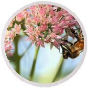 Honey Bee 2 Round Beach Towel