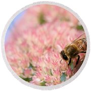 Honey Bee 3 Round Beach Towel