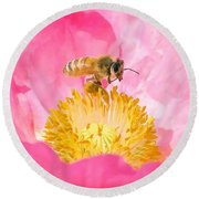 Honey Bee Collecting Pollen Round Beach Towel
