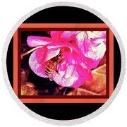 Honey Bee In A Pink Flower Round Beach Towel