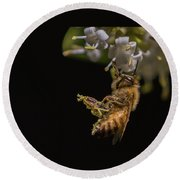 Honey Bee Kick, Apis Mellifera Round Beach Towel