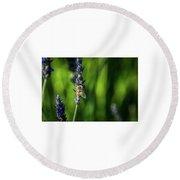 Honey Bee On Flower #5 Round Beach Towel