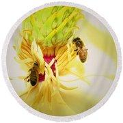 Honey Bees And Magnolia Round Beach Towel